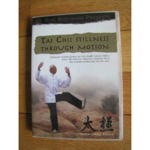 Tai Chi : Stillness through Motion * DVD